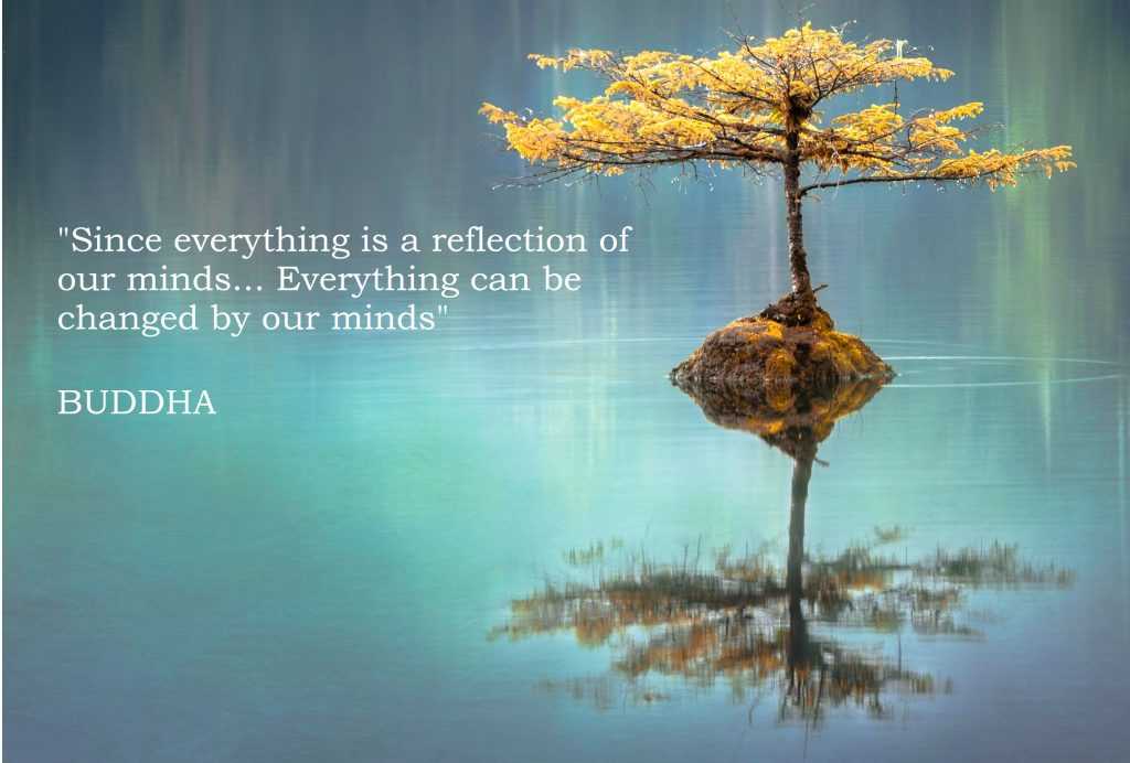 "Picture of a tree growing out of water. A quote of BUDDHA within picture ""Since everything is a reflection of our minds... Everything can be changed by our minds"""